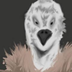 Avatar -Vulture-