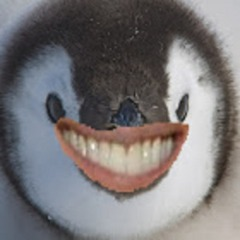 Avatar Penguinsss