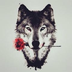 Avatar -Wolfie